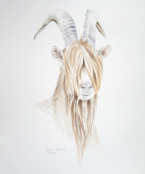 Tierportrait Aquarell 1
